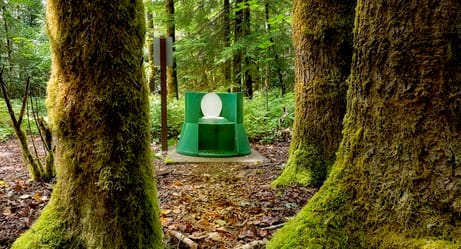 The Coolest Places in the World to Take a Poop