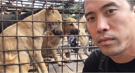 After China Refused To Cancel Its Annual Dog Meat Festival, This Man Took Matters Into His Own Hands