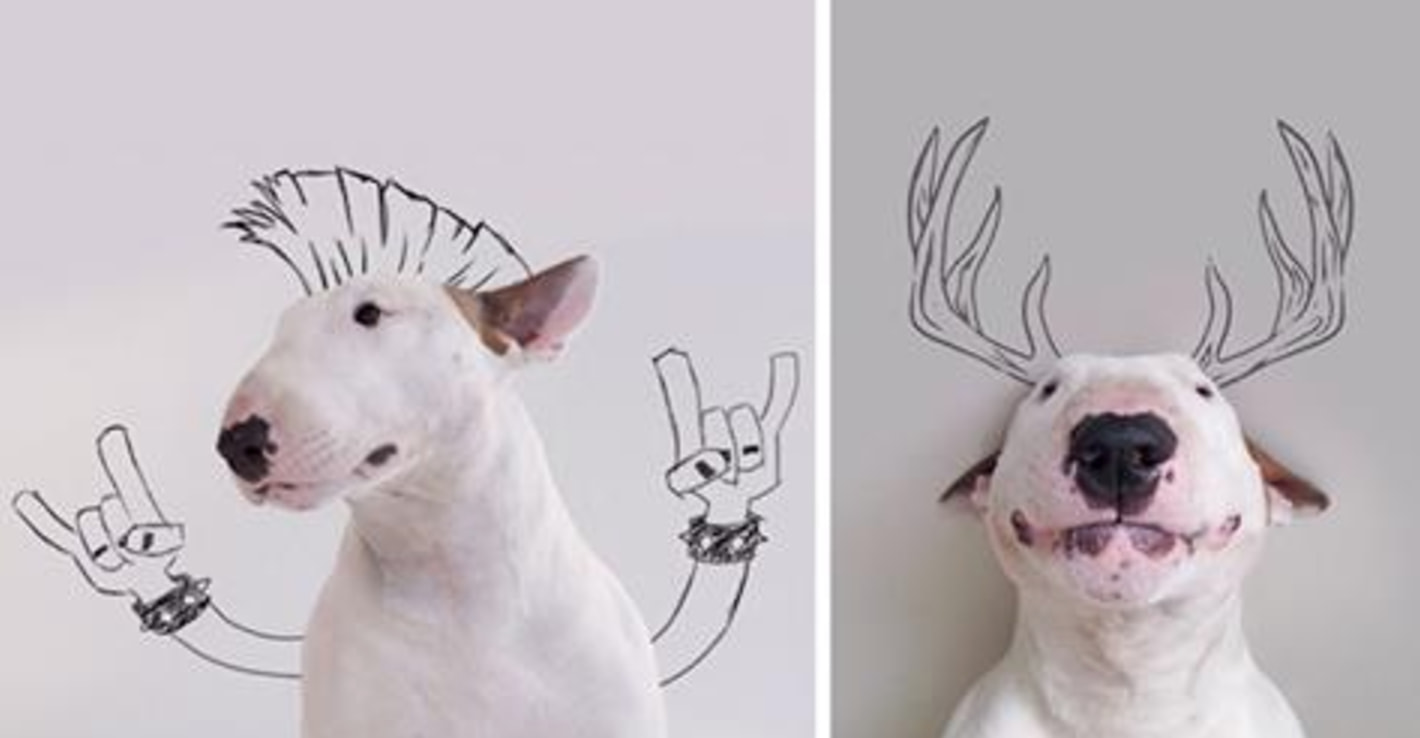 After His Ex-Wife Took Everything Except The Dog, This Man Created An Adorable Photo Series