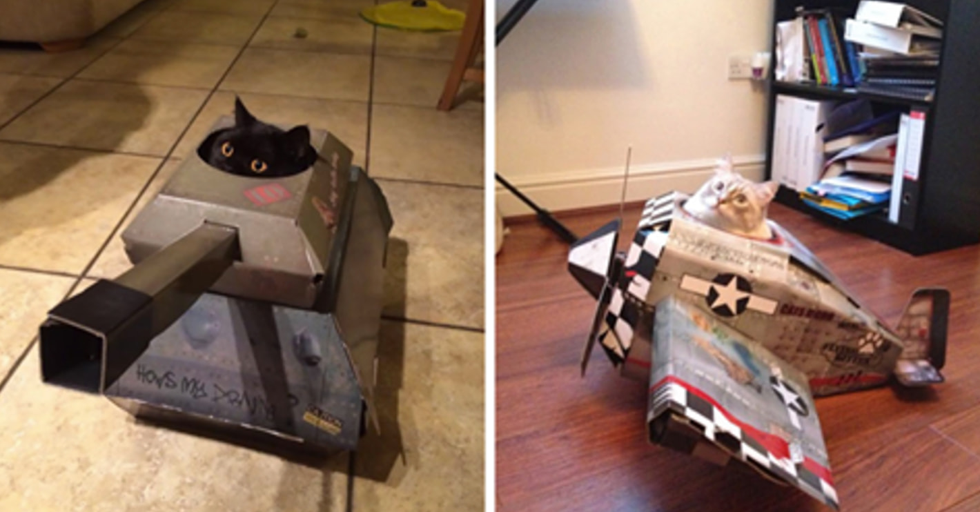 Cardboard House For Cats You Can Now Buy Cardboard Tanks Planes And Houses For Your Cat