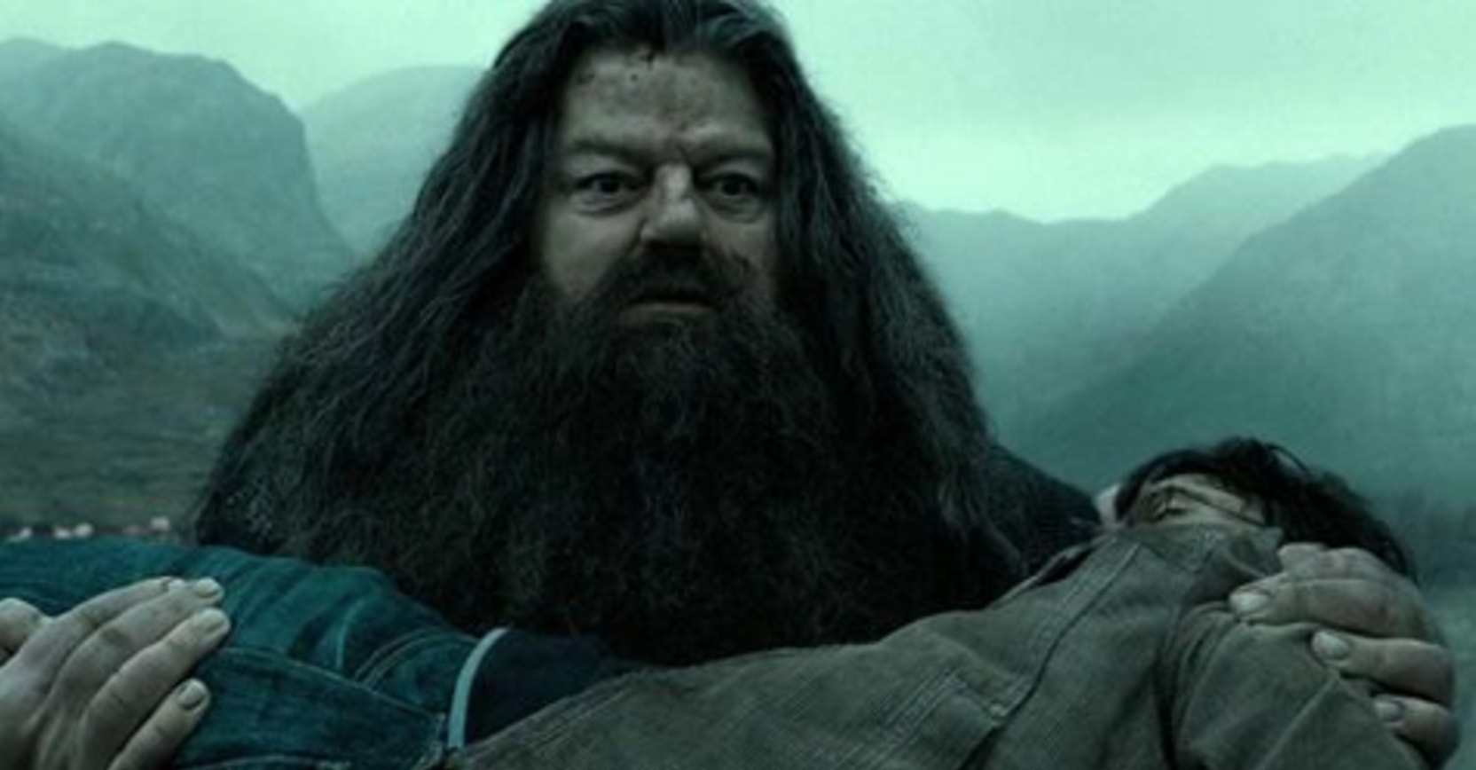 This Magical Harry Potter Theory Totally Changes The Ending