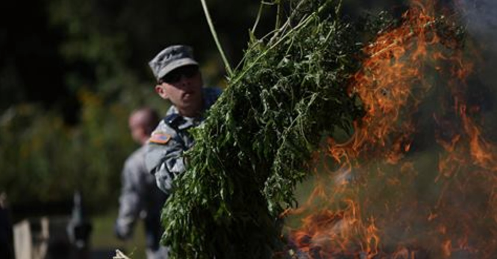 the reasons why marijuana is illegal As marijuana legalization gains popularity with voters, lawmakers are running out  of excuses here are top 10 reasons marijuana is still illegal.