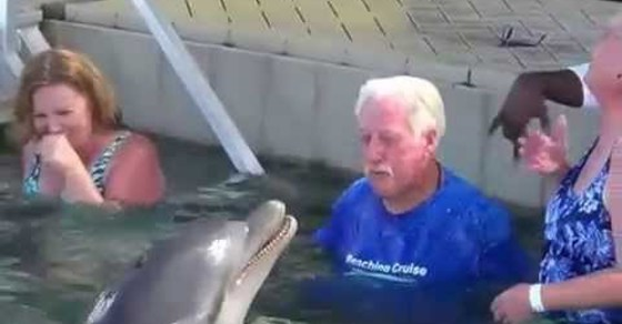 He Wasn't Going To Lose. Man Has Spitting Battle With a Dolphin