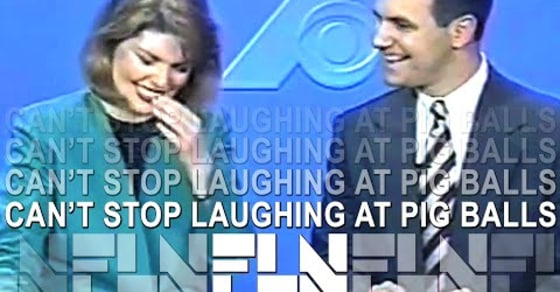 Blooper Alert: News Anchors Can't Help but Laugh at Monstrous Pig Balls on Air