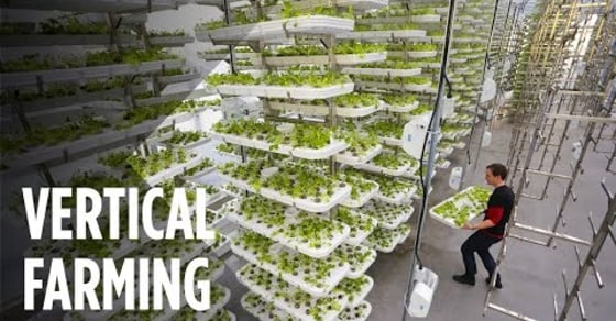 Peak into the Future of Farming, No Soil and 95% Less Water!