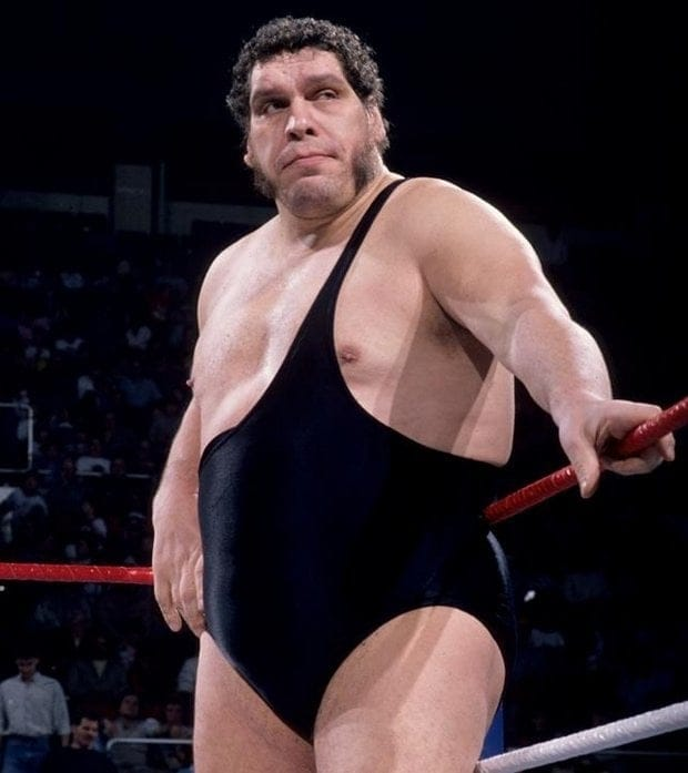 andre the giant - photo #20