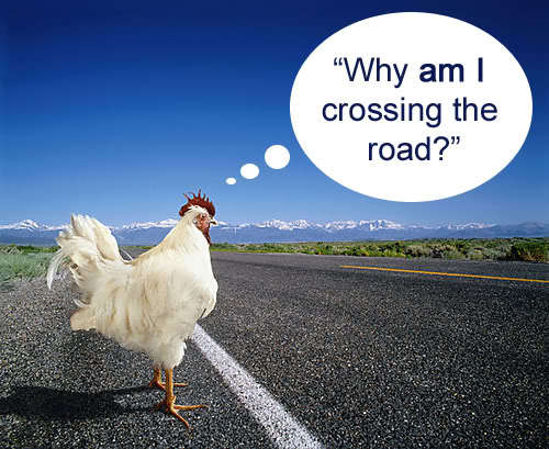 Anti joke chicken why did the chicken cross the road - photo#49