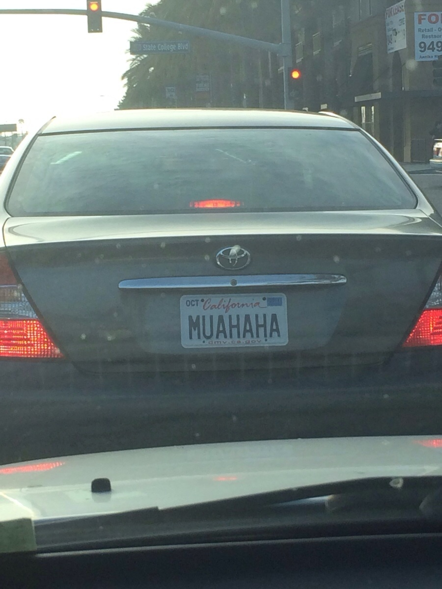 Funny License Plates You Wish You Thought Of Q Amp A Guff