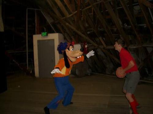 Secrets of Disneyland ...