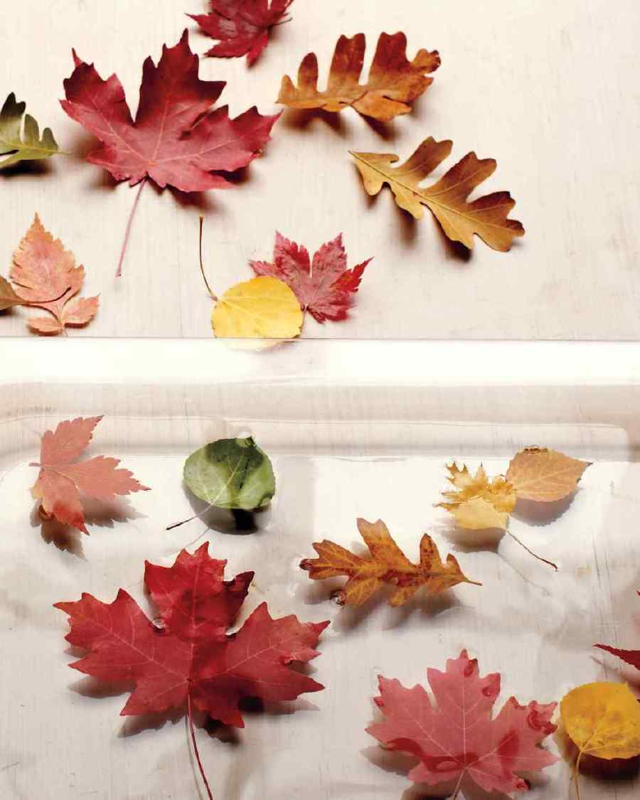Diy thanksgiving decor pinterest - Diy Thanksgiving Decorating Ideas
