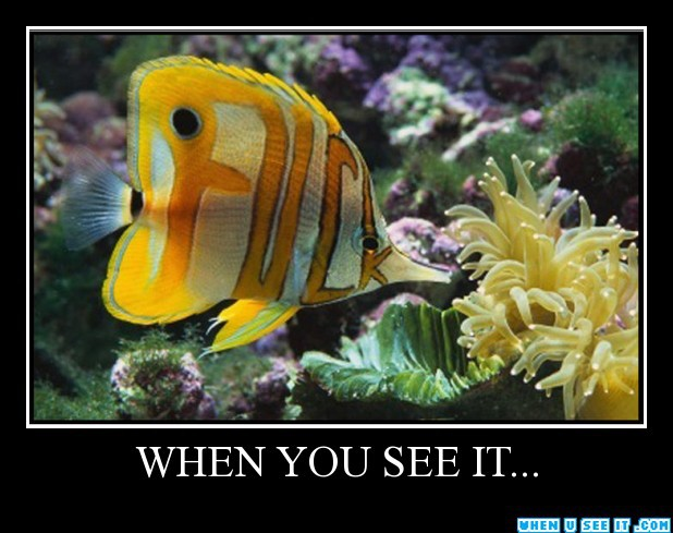 "75 ""When You See ..."